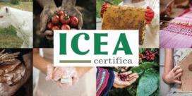 ICEA – ett hållbarhetscertifikat för italienska vingårdar