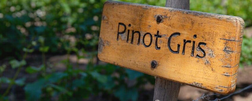 Pinot Gris - en träskylt med namnet