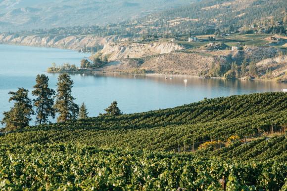 nya vinregioner - Kanada Okanagan Valley