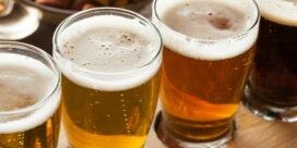 Ölstilar som är poppis – har du provat dessa?