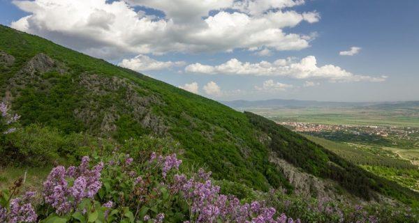 Tracian Valley