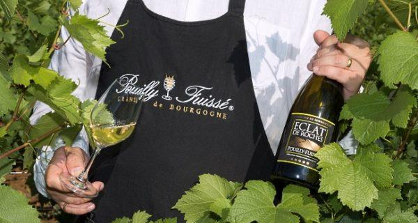 Pouilly-Fuissé-omslagsbild-man-bland-vilöv-med-flaska-och-glas
