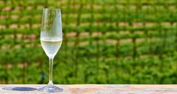 omslag ssverige vin
